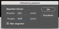afbeelding-passend-maken-200x600px