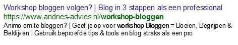 Metatags workshop bloggen Eindhoven bij Kwaaijongens