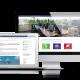 Responsive website marketing