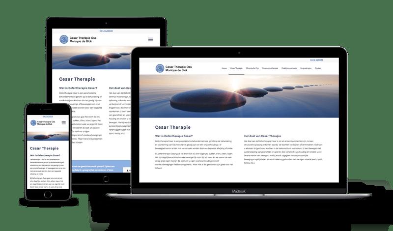 Cesar Therapie Oss - Webdesign