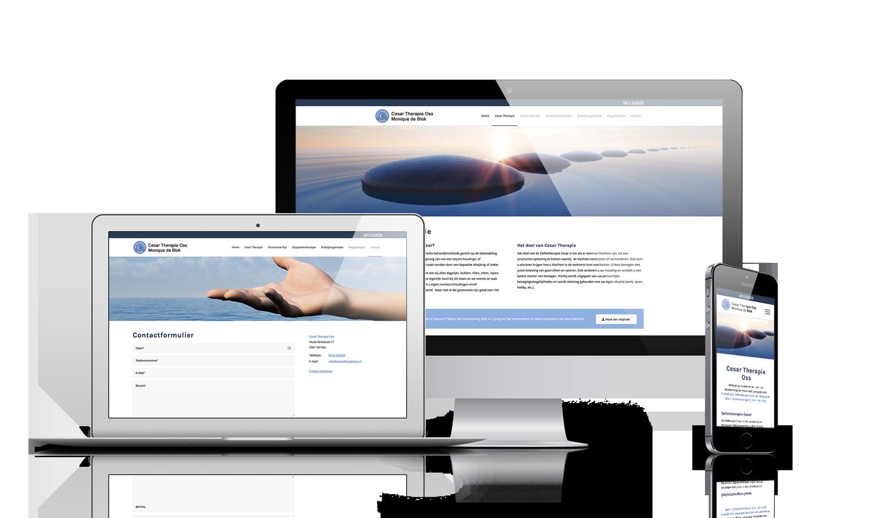 WordPress website Oss