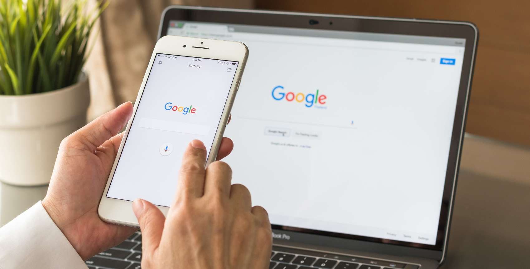 google web stories link in bio